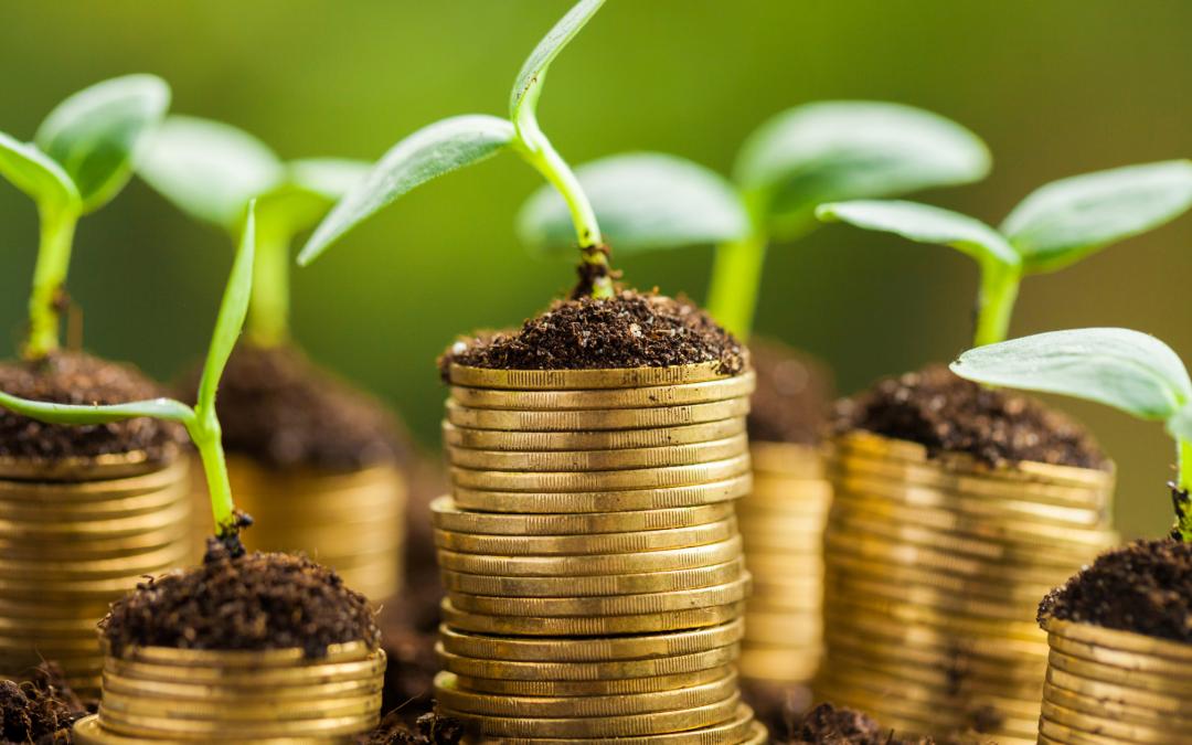 Jak zarabiać dodatkowe pieniądze, pracując na etacie?